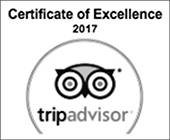 certificate of excellence 2017 trip advisor logo
